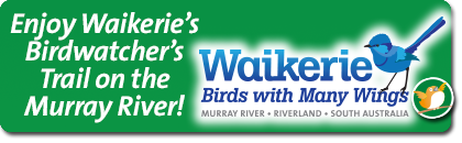Waikerie's Birdwatcher's Trail